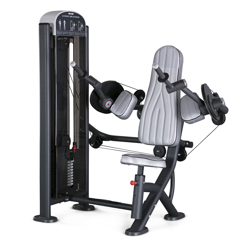 Alternate Arm Extension Machine